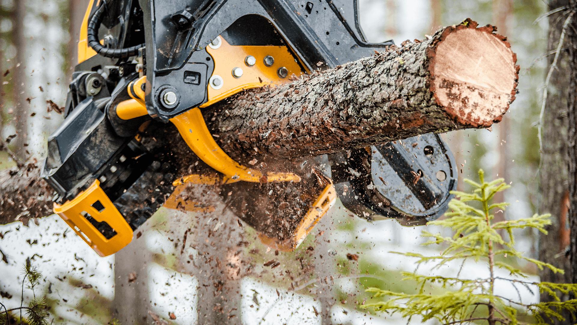 Forstmaschinenversicherung